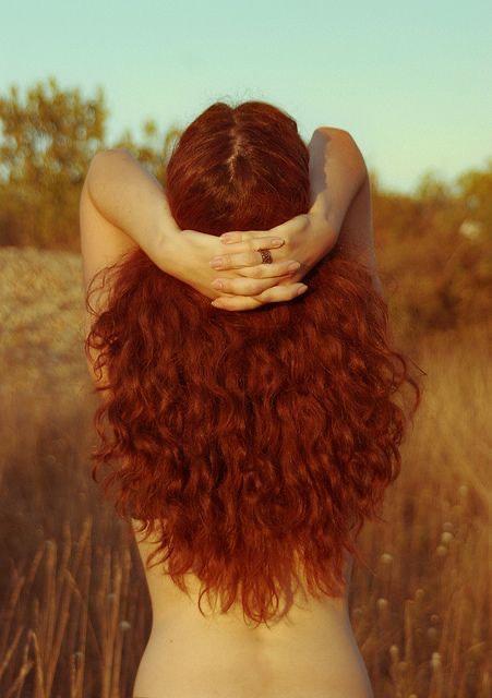 Musa de pelo rojo